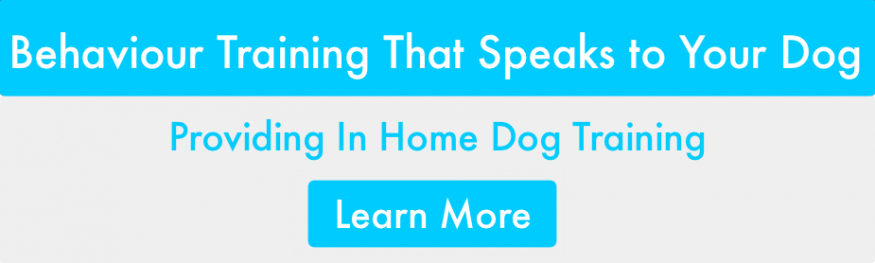 FURRY LOGIC Calgary In-Home Dog Training